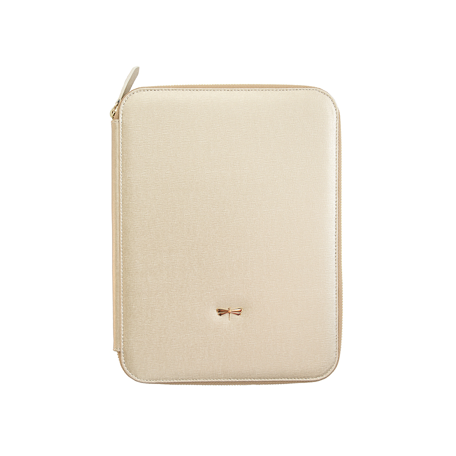 ARIA Gold leather case (smaller)
