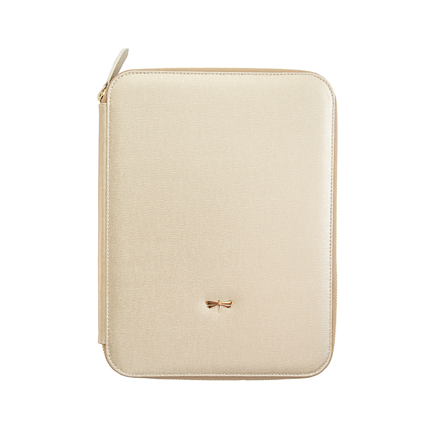 ARIA Gold leather case (normal)